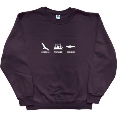 Seagull, Trawler, Sardine